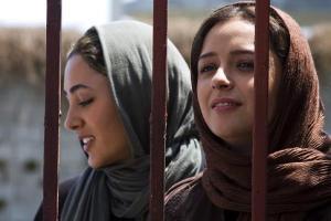 aboutelly_iranianfilmdaily